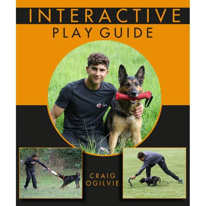 Interactive dog play workshop
